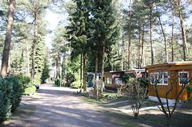 Finkenbusch