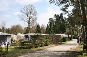 Rosencamp
