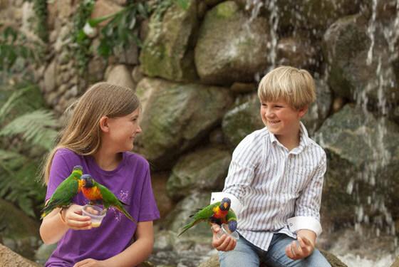 Kinder © Weltvogelpark